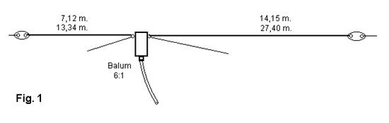 antena windom